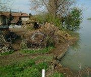 След високите води по Дунав идват комарите