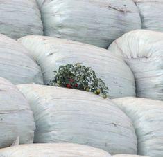 България отхвърли обвиненията на ЕК за боклука