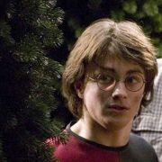 Последните филми за Хари Потър ще са в 3D формат