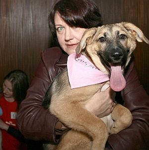 Обесиха показно бездомно куче в София