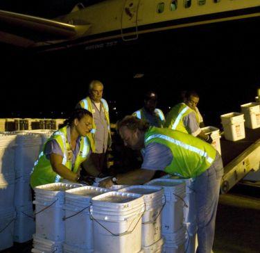 Испания предяви претенции към 17 тона морско съкровище