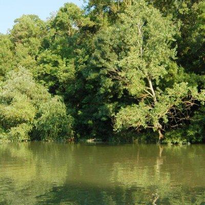 Възстановяват екосистемите във Варненско