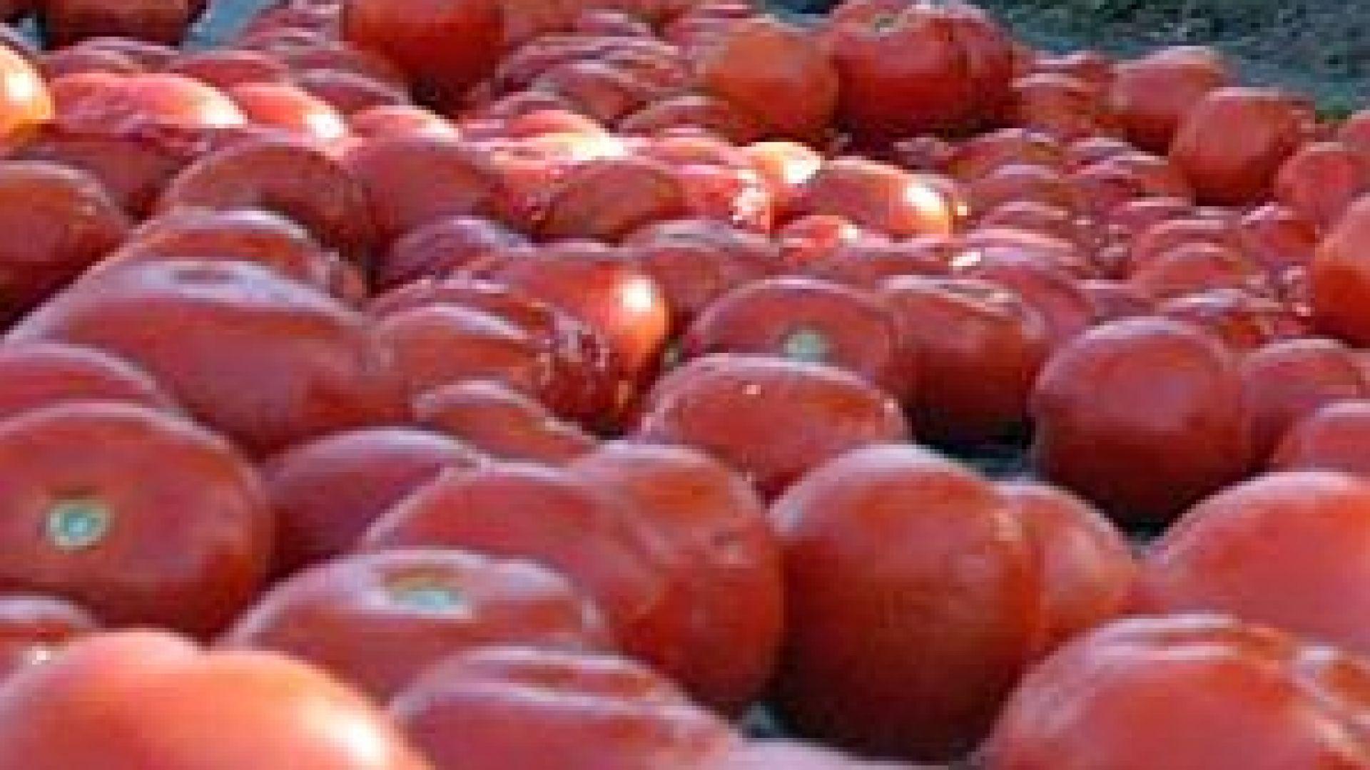 Цените на хранителните стоки на едро се повишиха с 1,79%