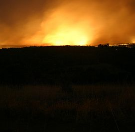 Загасиха пожара край Кричим на четвъртия ден