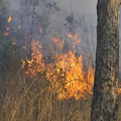 Селскостопанска машина предизвика горски пожар