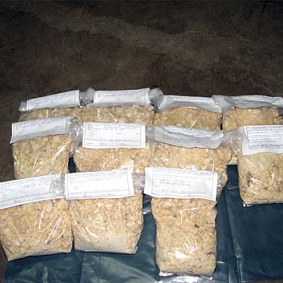 Българско семейство бе спипано в Гърция за трафик на кокаин