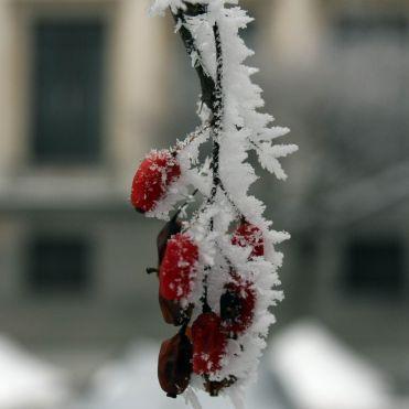 Изминалият ноември - аномално студен!