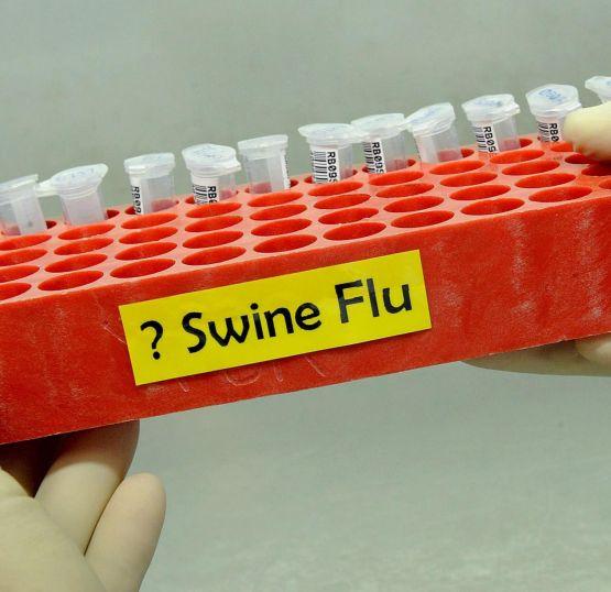 България навлезе в грипната пандемия