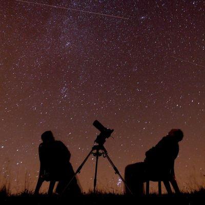 БНТ в 100 секунди: И тази вечер ще падат звезди