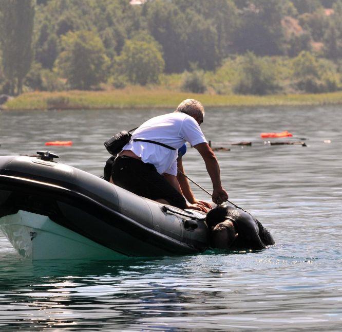 15 българи се удавиха в Охридското езеро