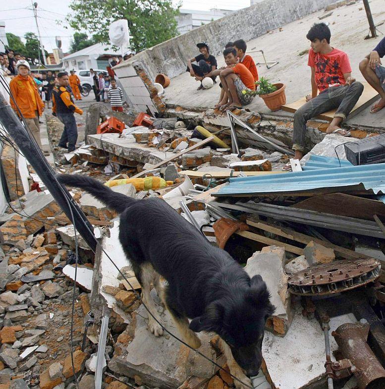Смятат хиляди за мъртви след труса в Индонезия