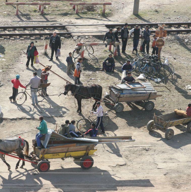 Стотици роми разграбиха фалирала мандра