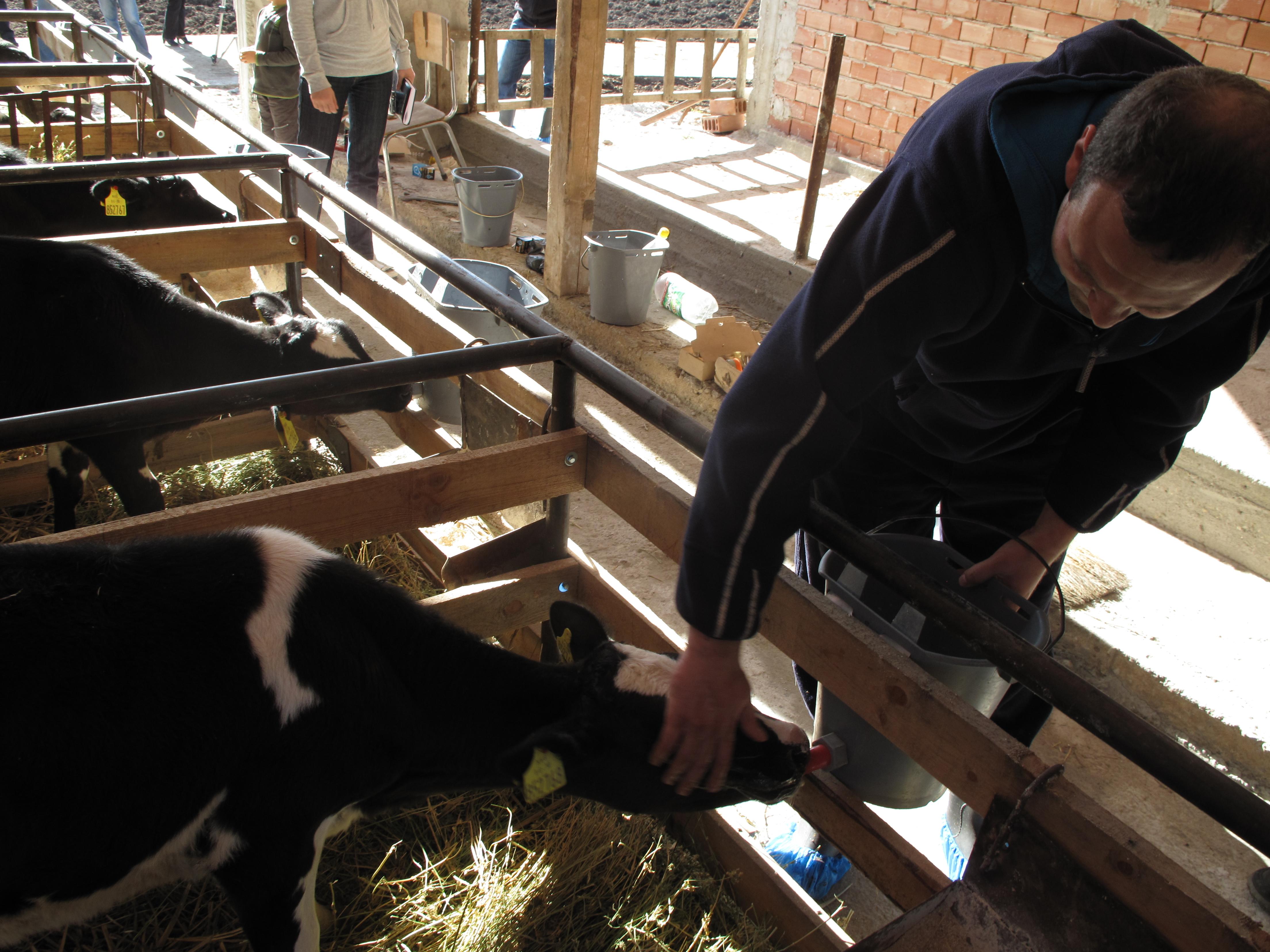 Над 60 000 ферми извън стандарта на ЕС