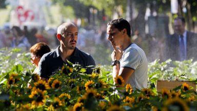 Португалия отчете рекорден брой туристи за 2015 г.