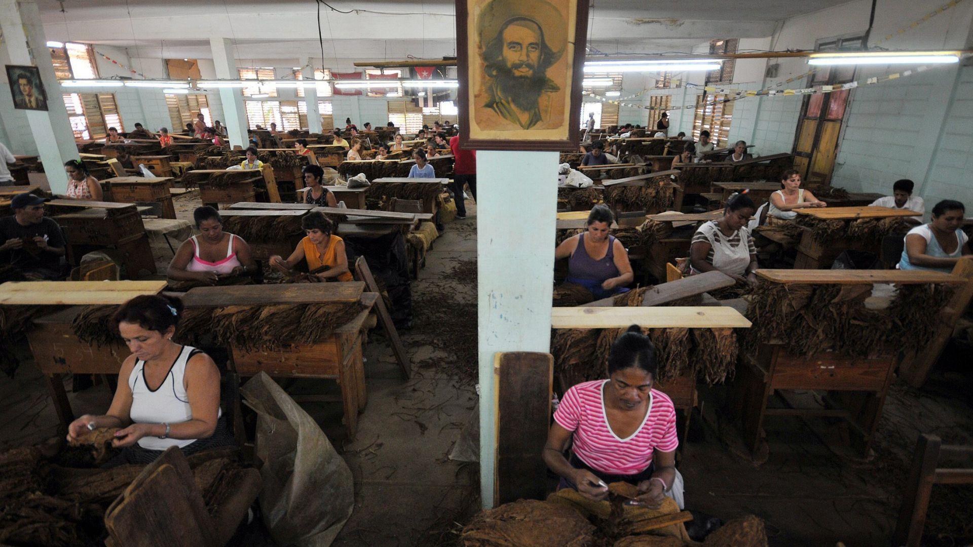 7% ръст на продажбите на кубински пури
