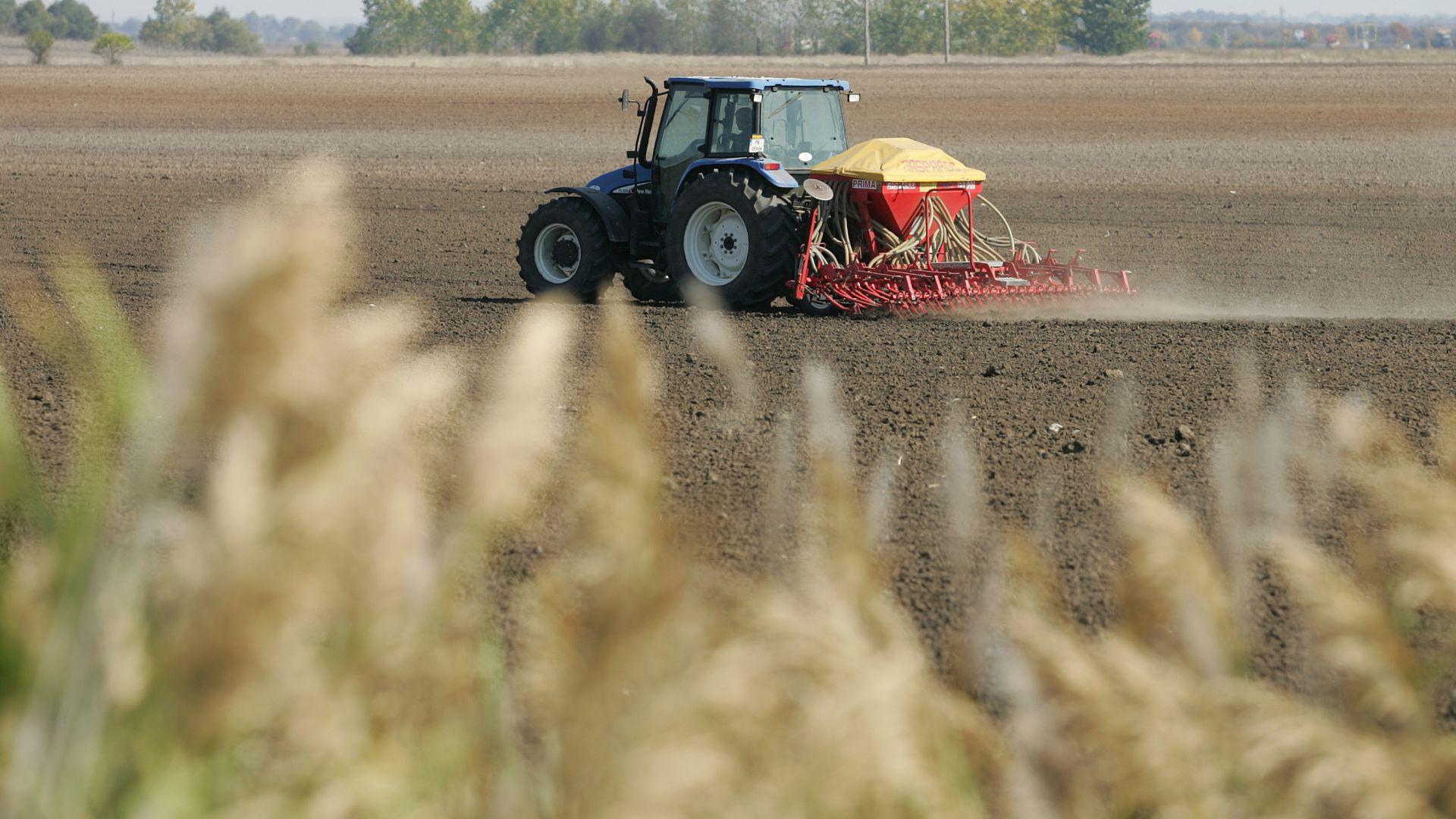 Експерт: 200 семейства у нас контролират 80% от земята