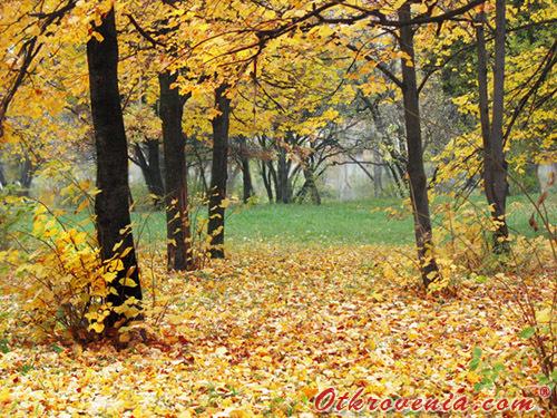 Есента иде във вторник