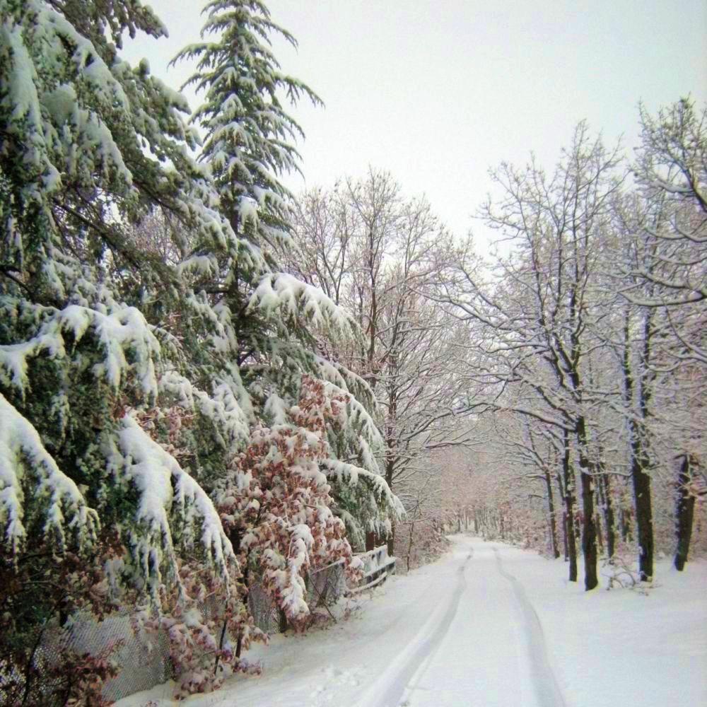 В Москва е още зима, у нас бавно се затопля