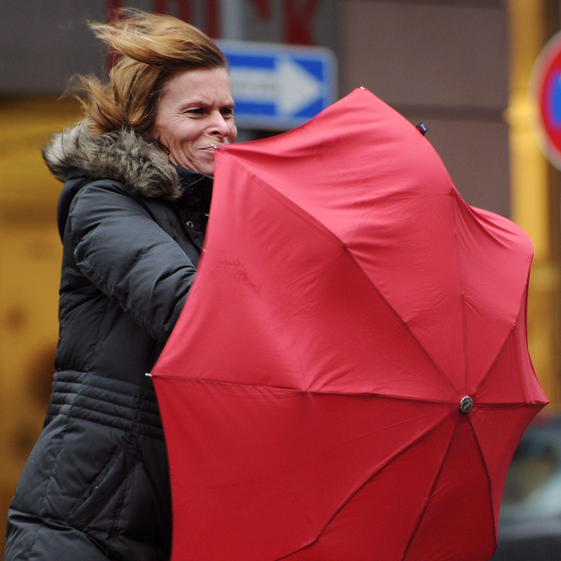 Предпролетно време от петък, на места температурите ще превишат 15 градуса.