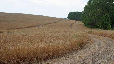 Сушата свали цената на земята в Добричкия регион