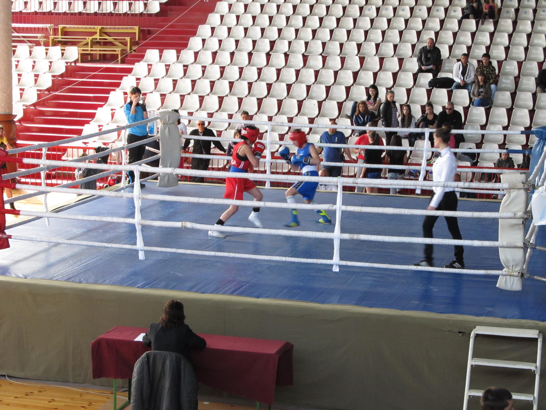 Контузии в националния женски отбор по бокс преди борбата за квоти