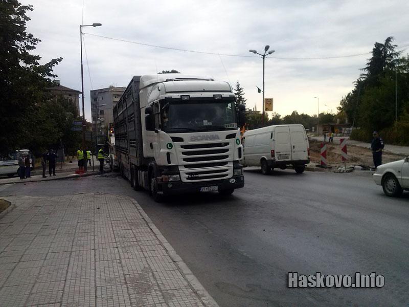 12 бика избягаха от пламнал ТИР в Димитровград
