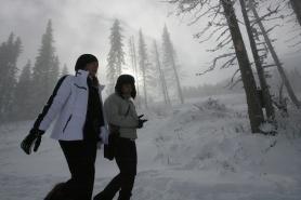 39 държави от цял свят ще отбележат Световния снежен ден