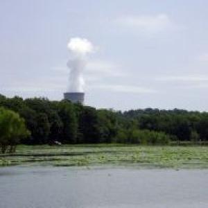 Ядрената енергетика е прекалено важна, за да се оставя на политиците