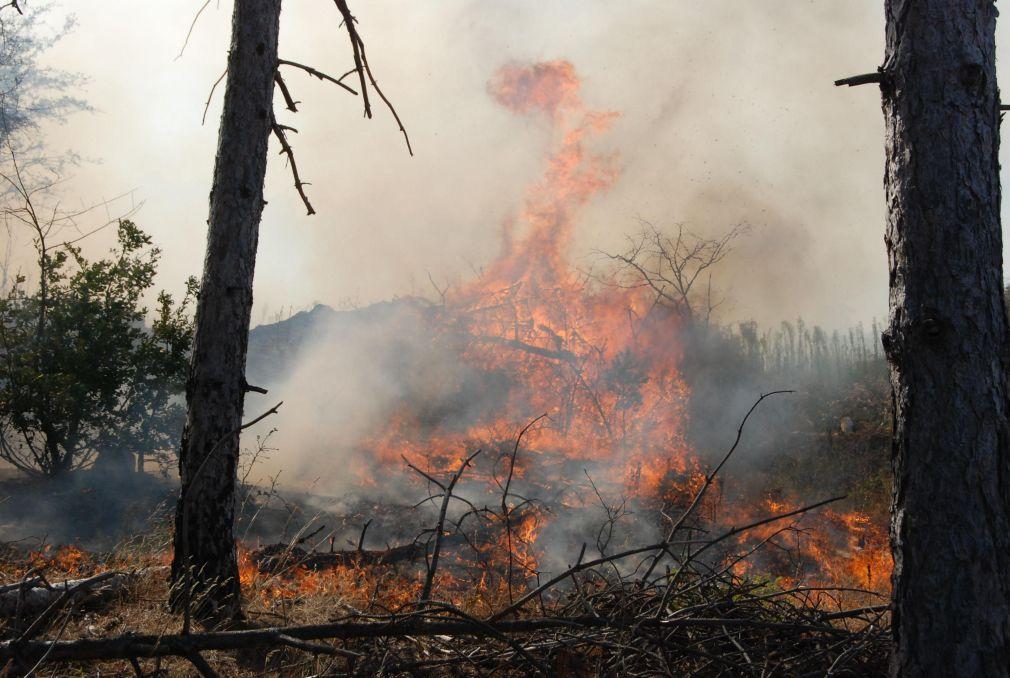 Гасят горски пожари край Елхово и Средец