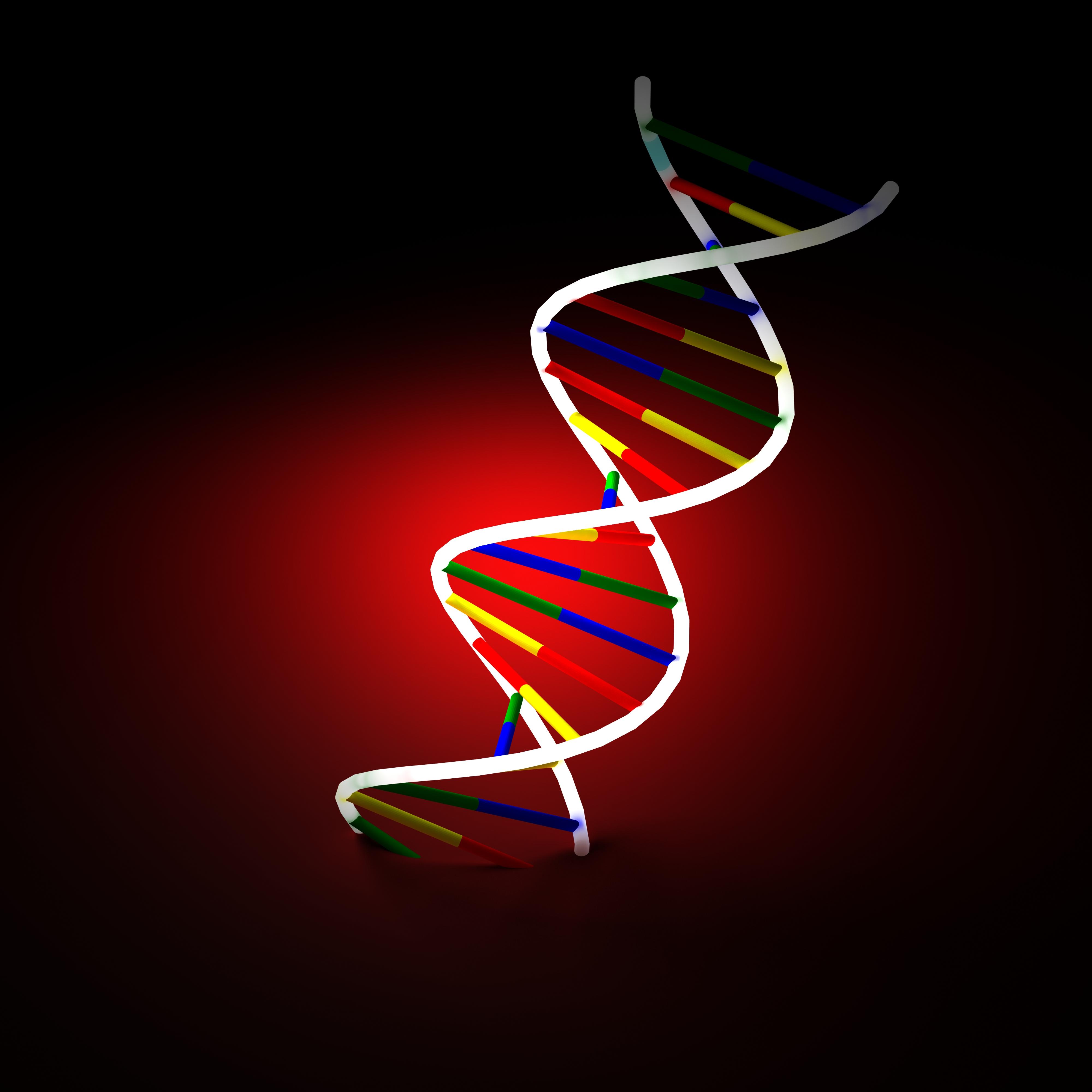 И допустими дози на някои Е-та в храните може да рушат ДНК