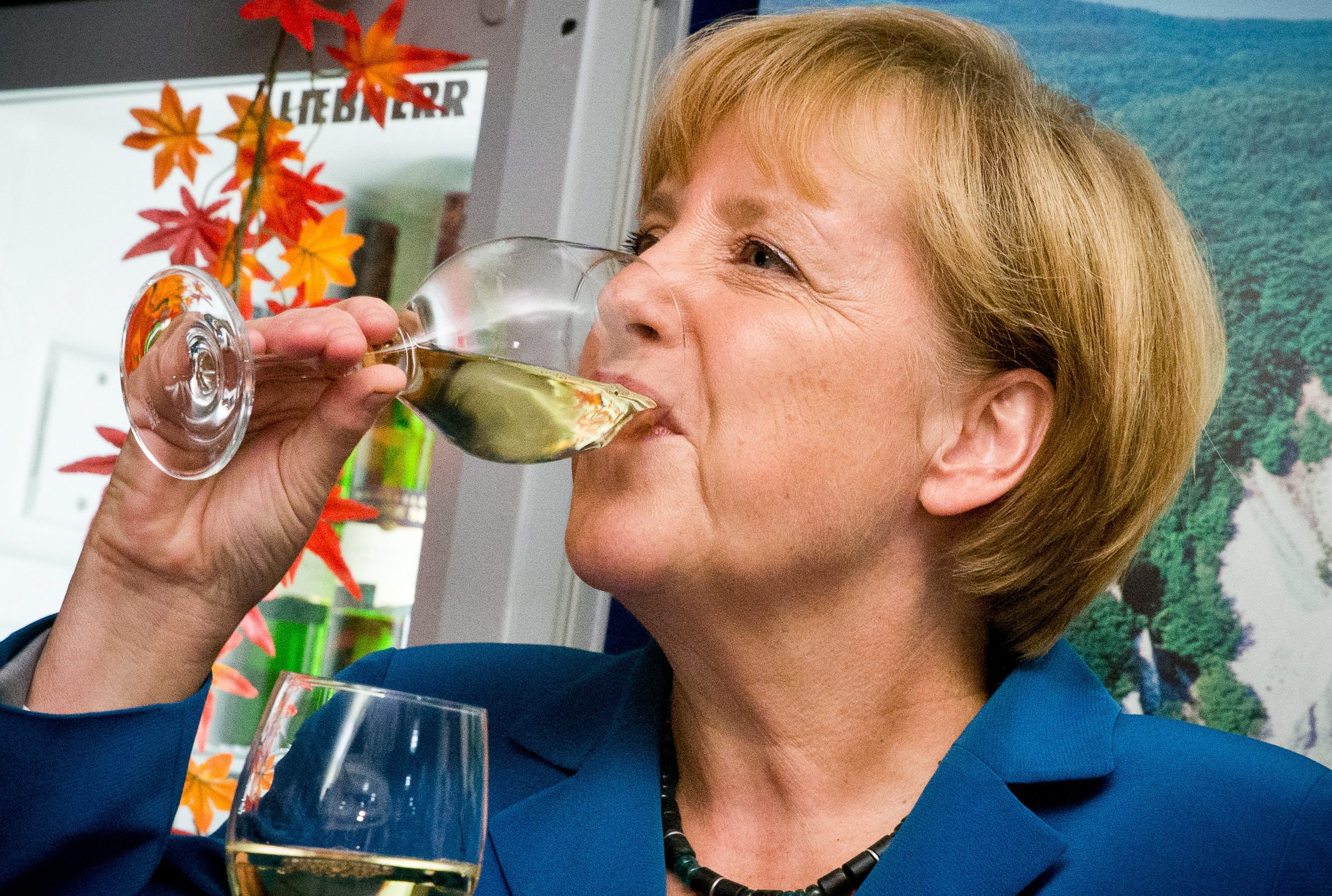 Меркел триумфира, но остана на 5 места от абсолютното мнозинство