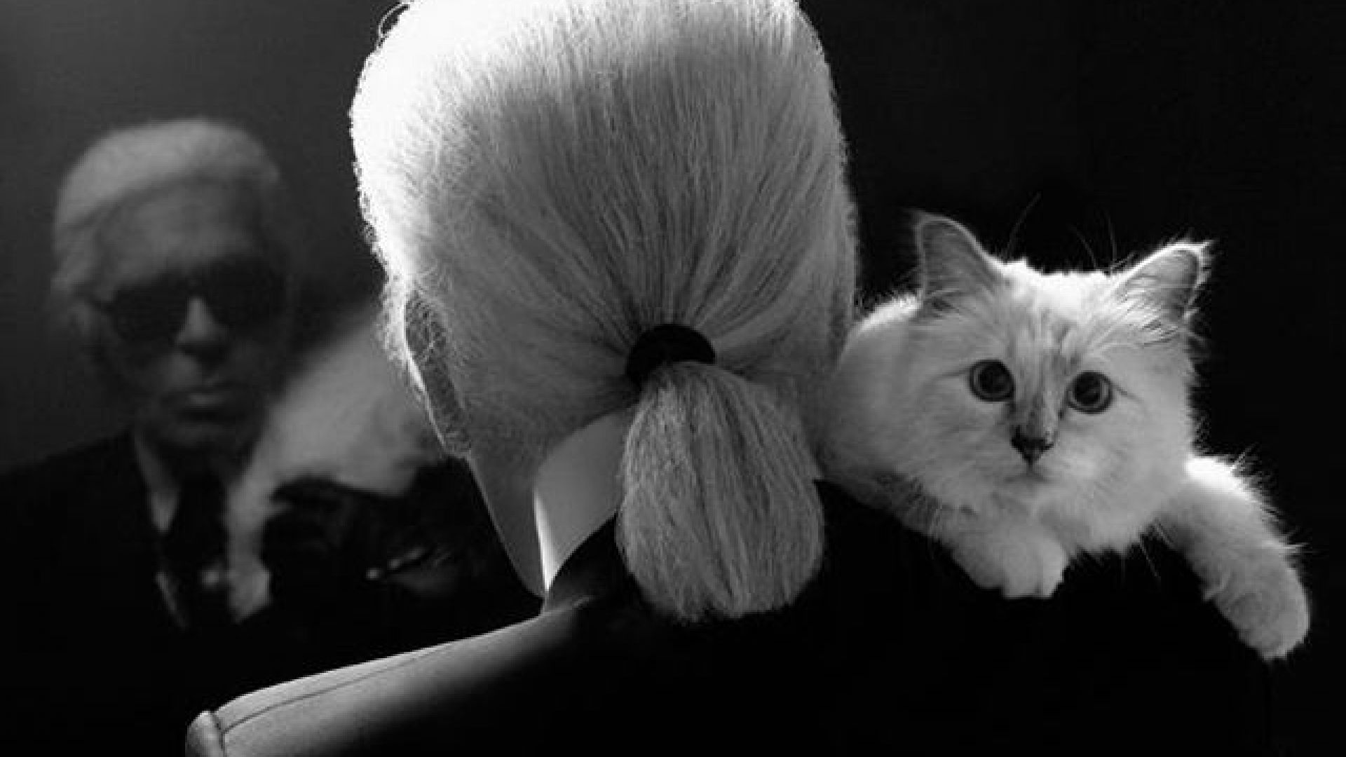 Карл Лагерфелд с котката си Шупет