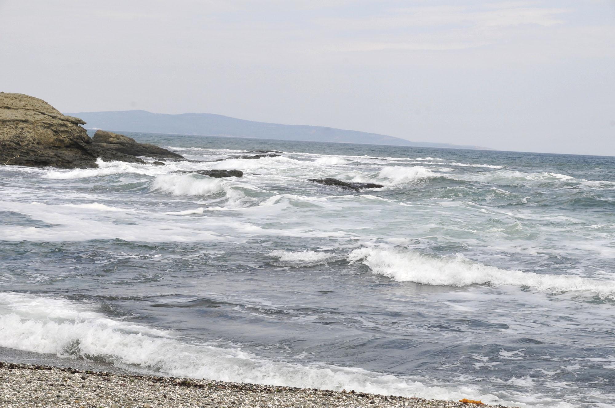 """Природозащитници: """"Корал"""" и """"Арапя"""" остават за застрояване"""