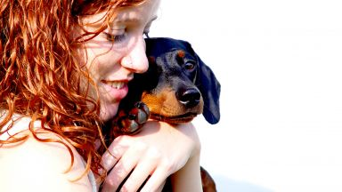 Дакелите са най-хапещата порода кучета