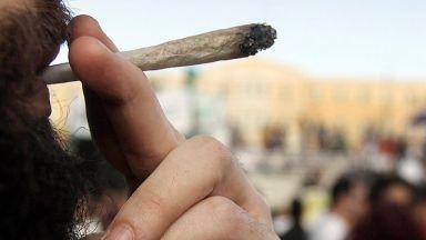 Канадският парламент одобри легализацията на марихуана за развлечения