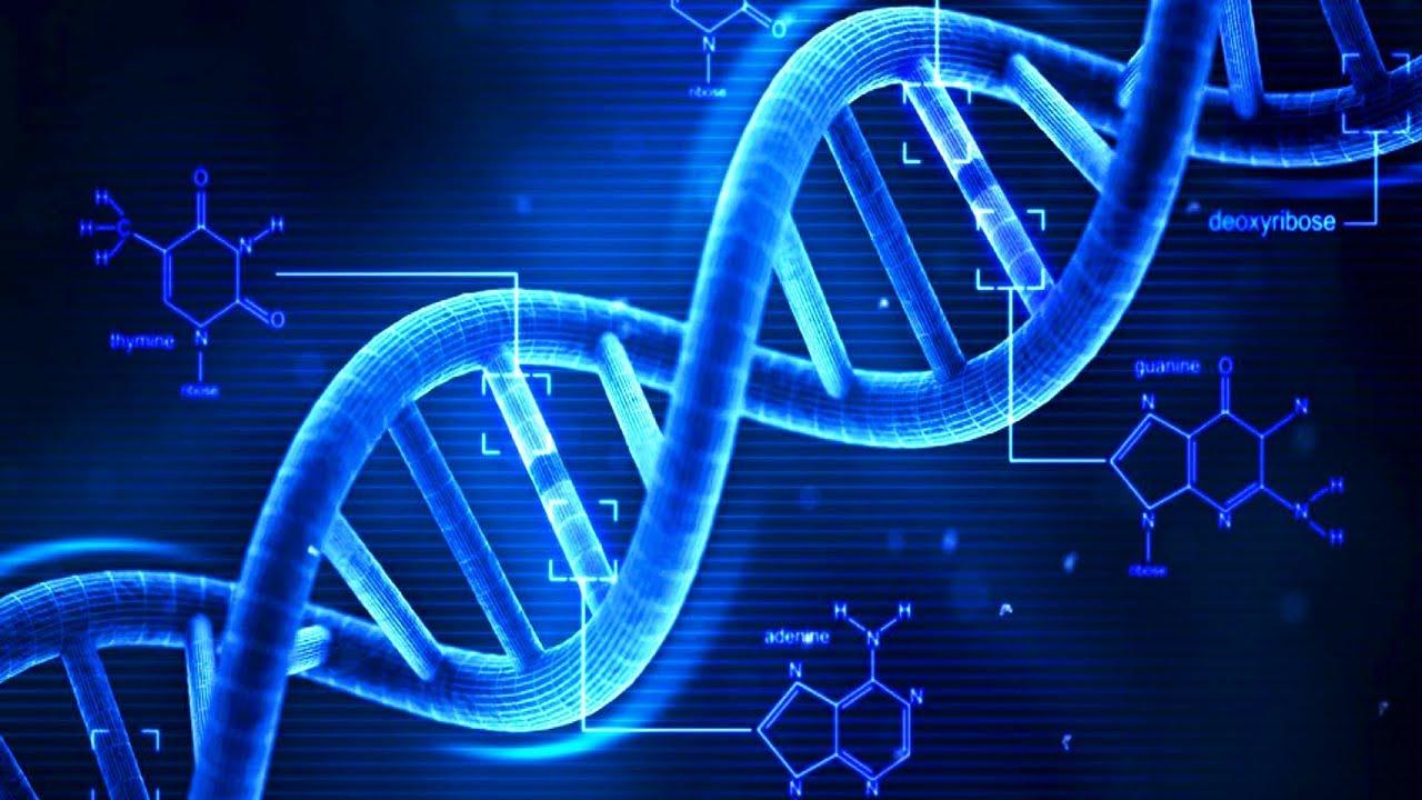 БГ Учен: Щастието е в гените