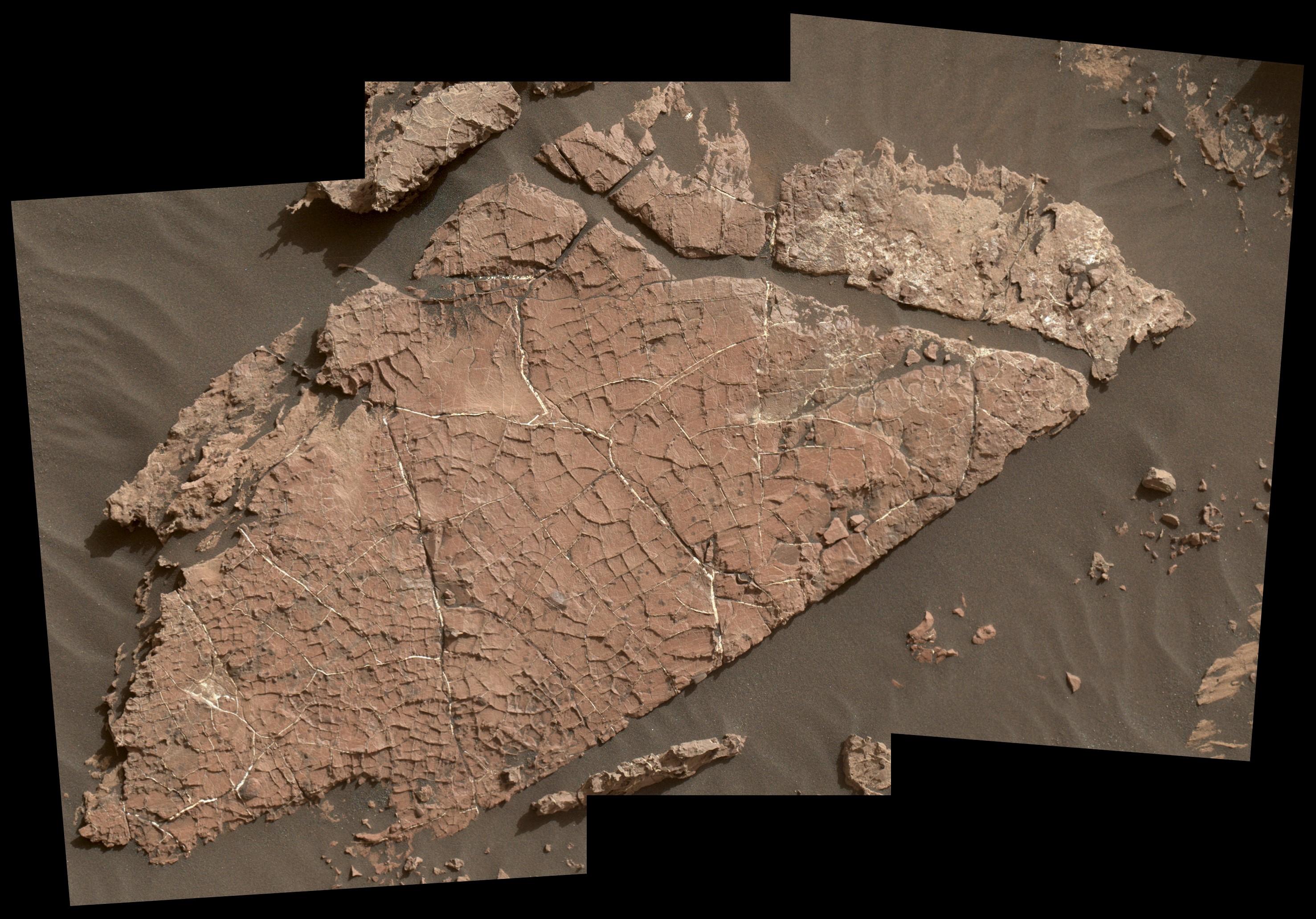 НАСА: Открихме следи от кал на Марс