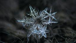 Снежинките на Алексей Клятов