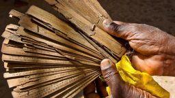 12 библиотеки на палмовите листа съхраняват записи за съдбите на всички хора на земята
