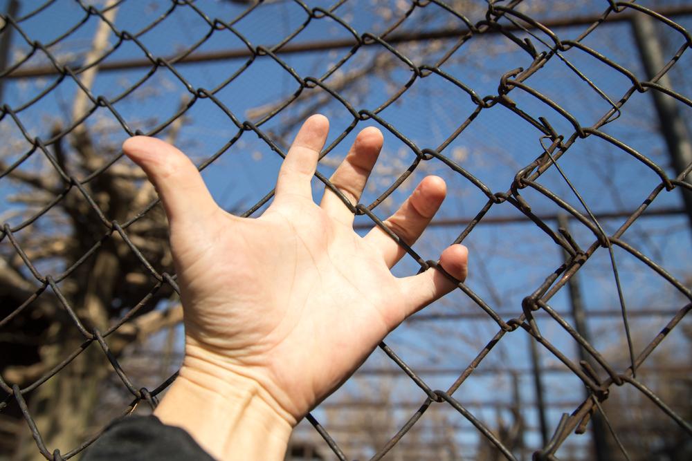 Германия, Франция и Дания: Граничните проверки да останат
