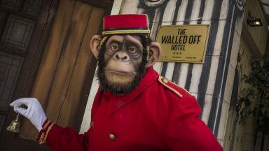 Загадъчният Банкси декорира хотел на Западния бряг