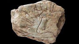 Френски археолози 4 години крили уникална находка