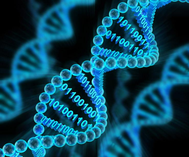 Компютърни вируси ще бродят в ДНК-то?