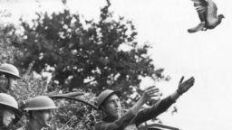 """Немите"" герои на двете световни войни"