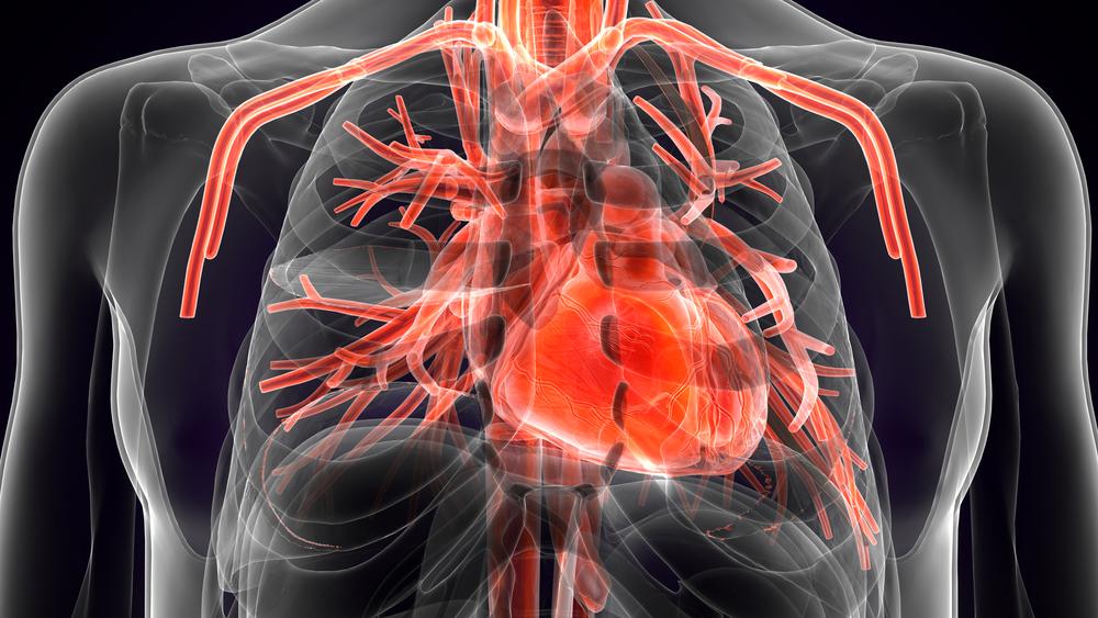 България е първа по смъртност от сърдечно-съдови болести
