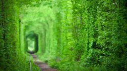 Магически пътеки по света, които ни отвеждат директно в приказките
