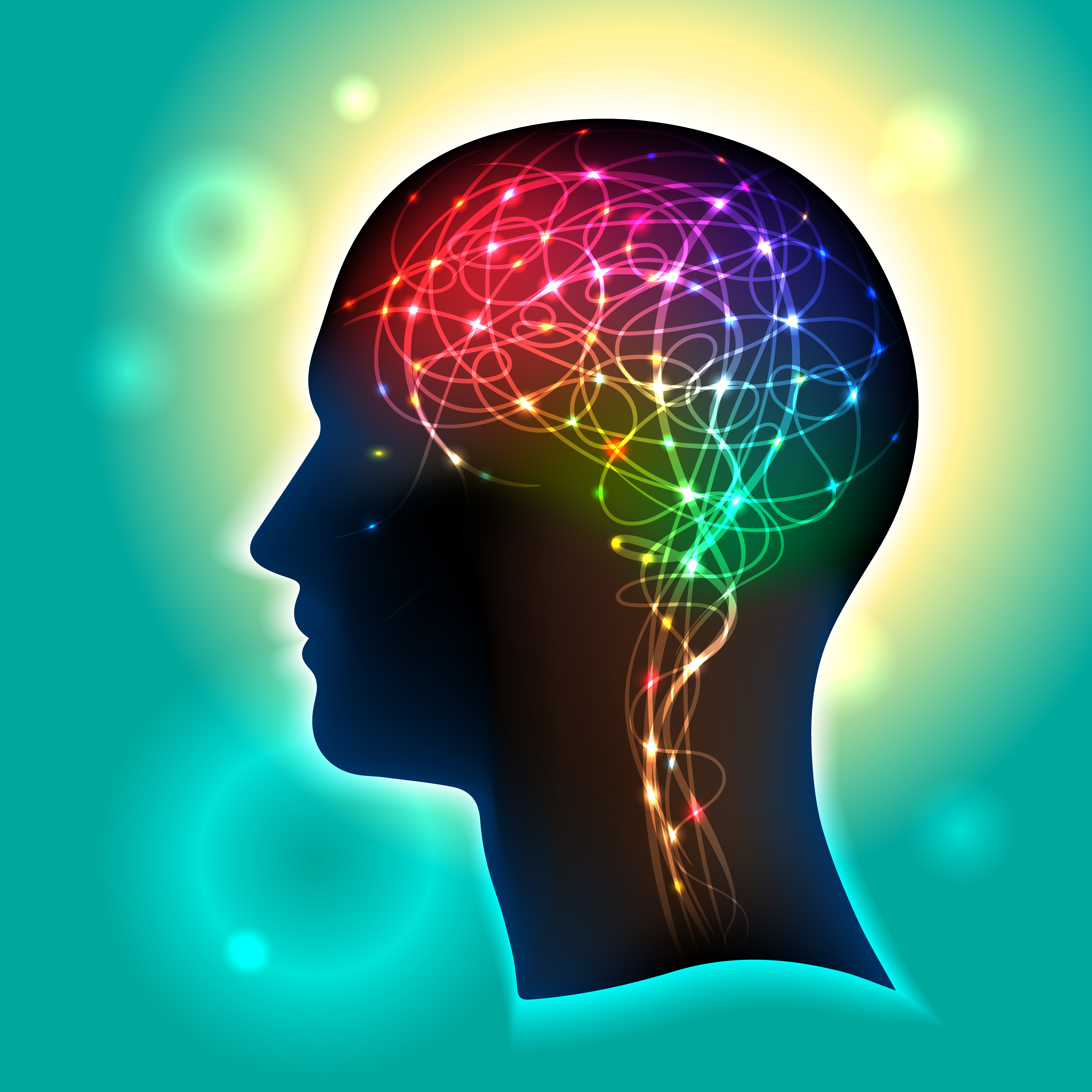 Финансово успешни хора си приличат по мозъка
