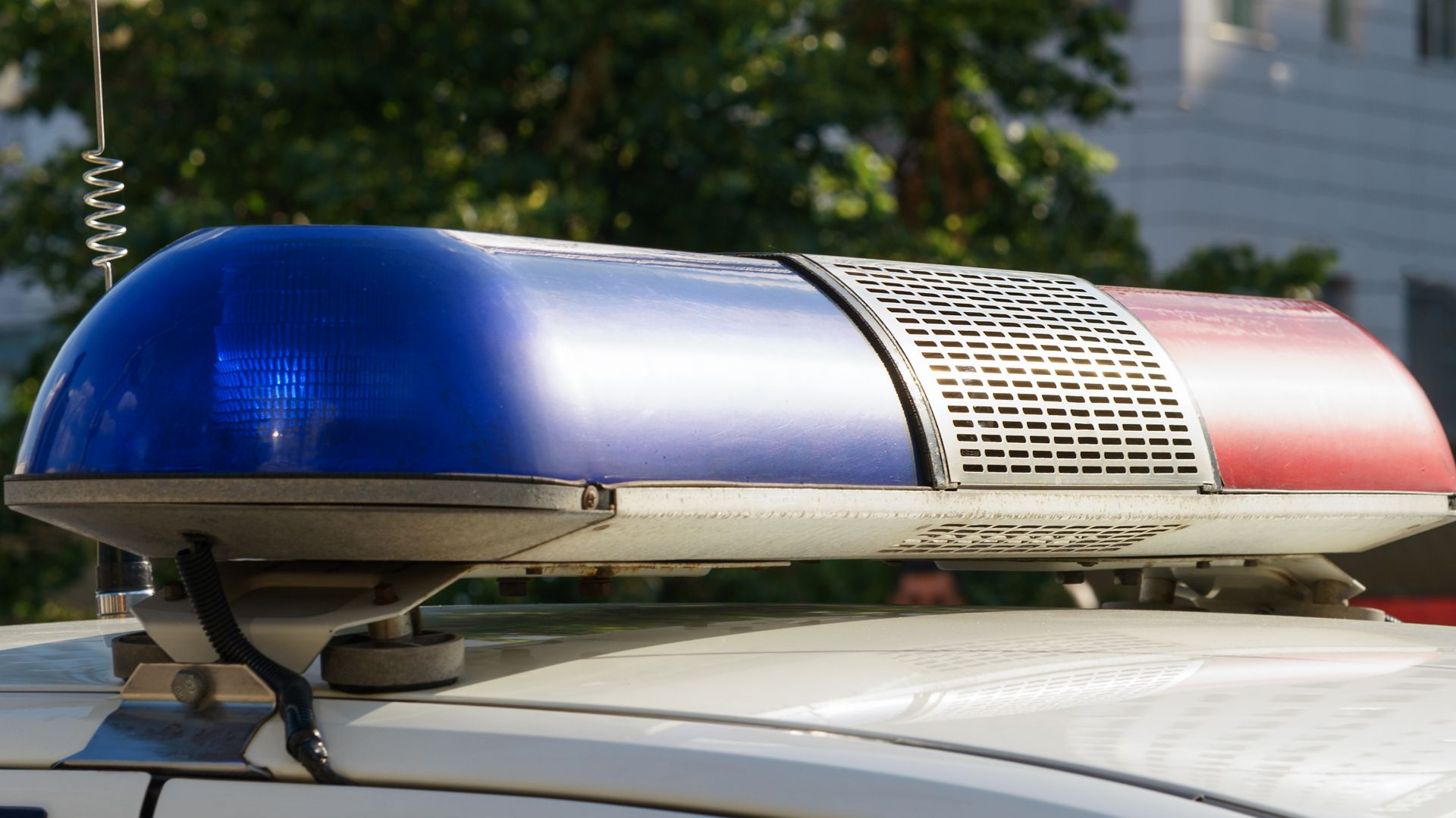 Млад мъж загина след удар в крайпътно дърво