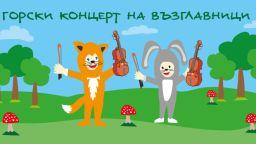 """Горски концерт на възглавници с камерен оркестър """"Виртуози"""""""