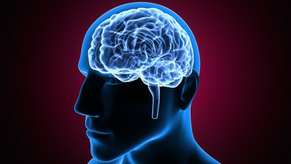 Учени: Мозъкът ни може да е квантов компютър